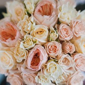 Фотограф на весілля замовити в Києві, Фотограф Солодкий Максим, ціна на послуги фотографа