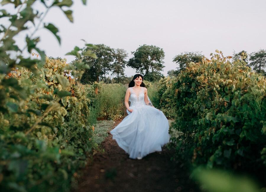 Артем і Олена: весільна фотосесія в виноградному полі